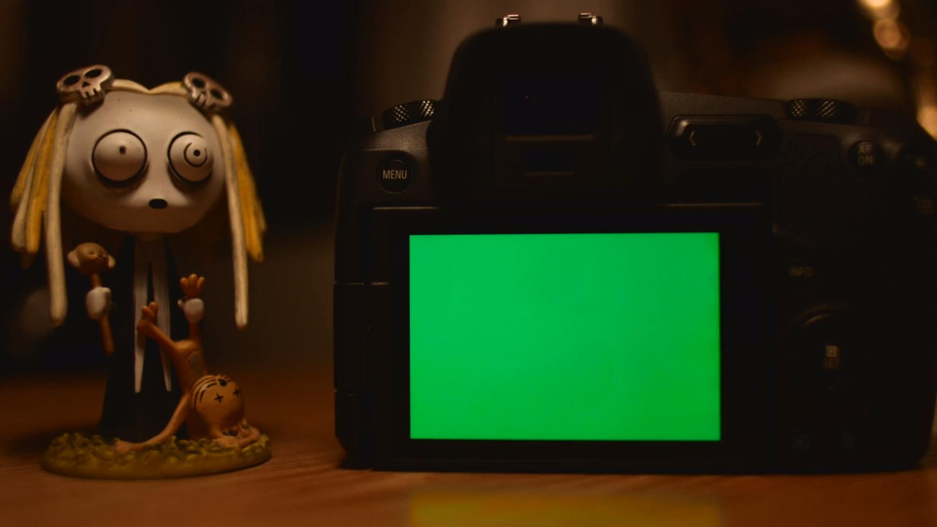 Canon EOS R / RP